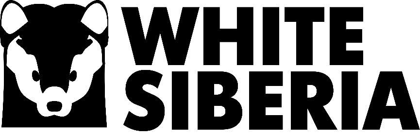 Электроскутеры CityCoco White Siberia купить